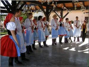 2007_vinobrani_08